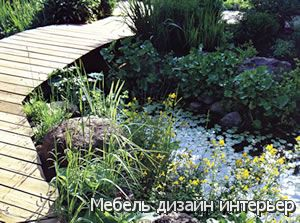 Рыбы в садовом пруду